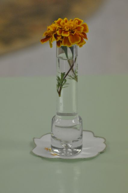 A marigold in a simple vase attracted sunlight to a table for two.