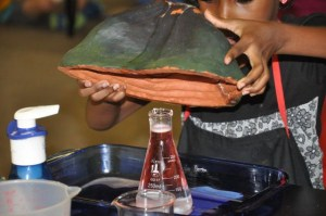 Here's the secret to the volcano eruption, a flask for the chemical reaction.