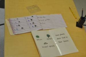 We've been reading through some of our books to find phrases that have a noun, an adjective and an article.