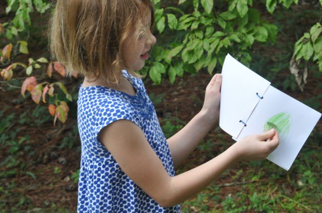 We get to go out to collect botanical specimens. . .